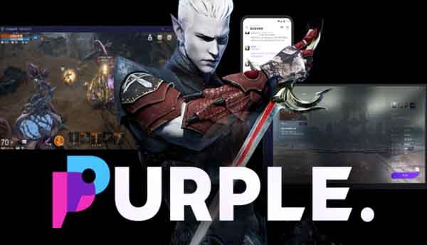 NC_soft_Purple41.jpg